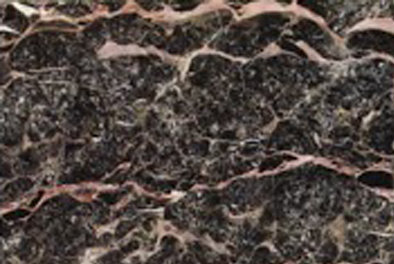 supplier-marmer-camellion-red-marmer-import-harga-marmer-import-wismita-marmer-marble